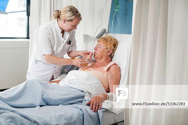 Krankenschwester hilft Patientin im Krankenhausbett beim Trinken