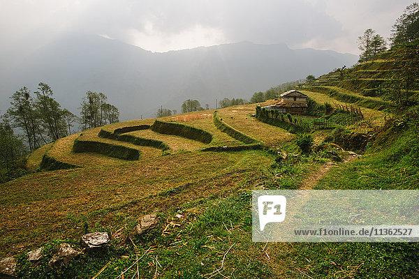 ABC trek (Annapurna Base Camp trek)  Nepal