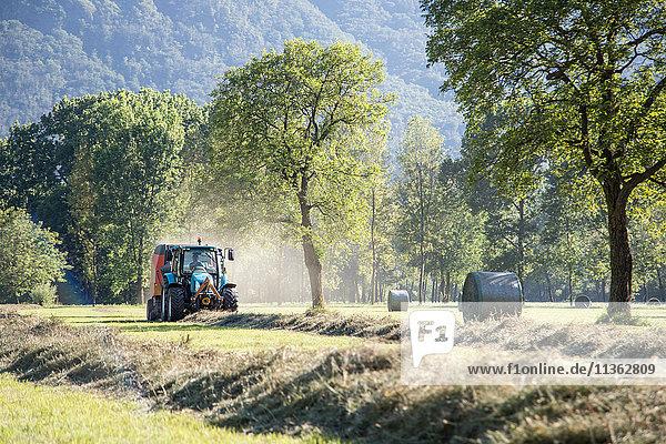 Traktor-Ernte auf dem Feld