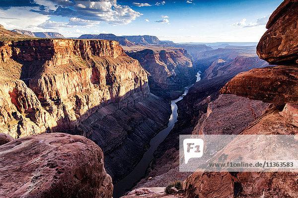 Blick vom Aussichtspunkt Torroweap  Littlefield  Arizona  USA