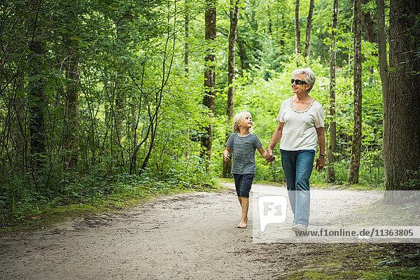 Grossmutter und Enkel gehen im Wald und halten sich an den Händen