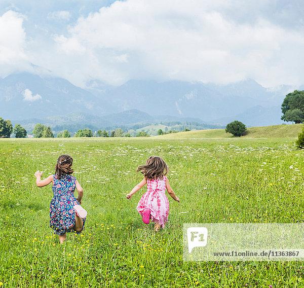 Rückansicht der im Feld laufenden Mädchen  Füssen  Bayern  Deutschland