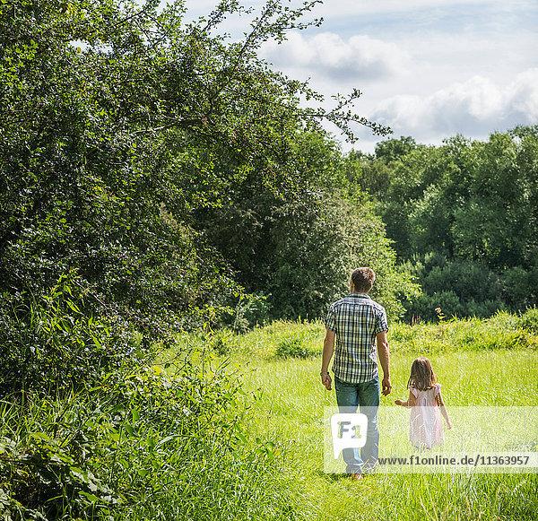 Rückansicht von Vater und Tochter beim Spaziergang durch die Wiese  Porta Westfalica  Nordrhein-Westfalen  Deutschland