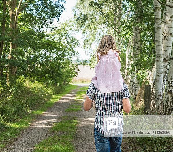 Rückansicht eines Vaters  der seine Tochter auf den Schultern trägt  Porta Westfalica  Nordrhein-Westfalen  Deutschland