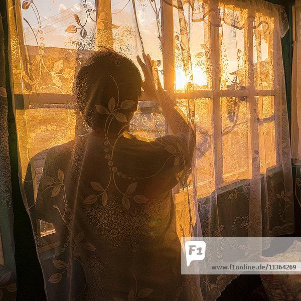 Mittelgroßer erwachsener Mann  hinter Netzvorhang  bei Sonnenuntergang aus dem Fenster schauend  Rückansicht