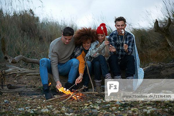 Vier erwachsene Freunde drängten sich zusammen  um in der Abenddämmerung am Strand Marshmallows zu rösten