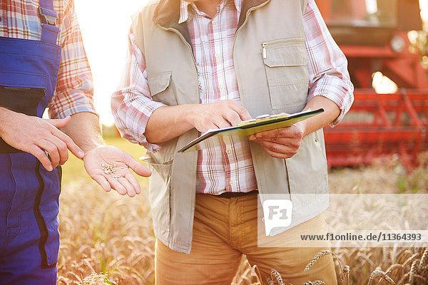 Ausschnittansicht der Bauern im Weizenfeld beim Blick auf die Zwischenablage