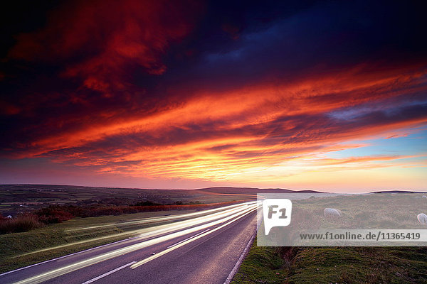 Headlight trails on moorland road at sunset  Reynoldston  Gower  Wales