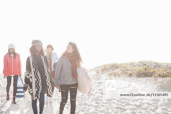 Junge Erwachsene picknickende Freunde beim Strandspaziergang am Strand  Western Cape  Südafrika