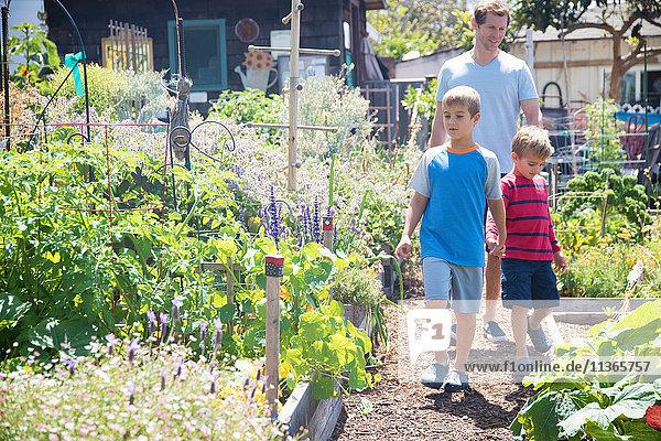 Vater und zwei Söhne gehen im Schrebergarten spazieren