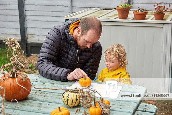 Ein mittelgroßer Mann und eine Kleinkind-Tochter schauen sich Kürbis am Picknicktisch auf dem Bauernhof an