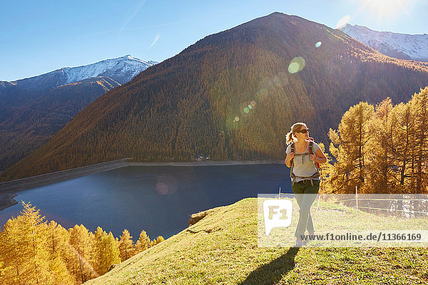 Woman hiking  looking at view  Schnalstal  South Tyrol  Italy