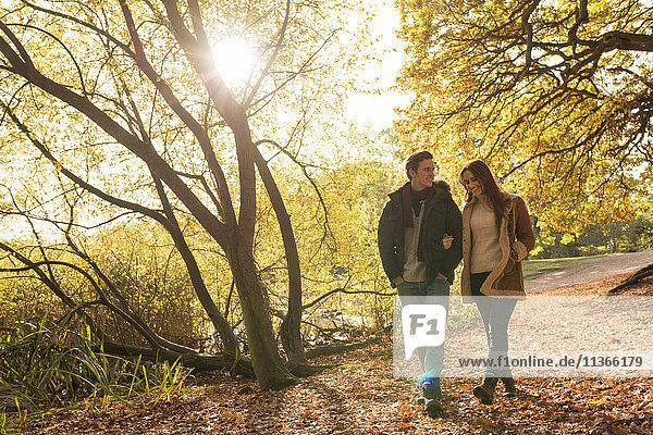 Junges Paar beim Waldspaziergang  Arm in Arm  lächelnd