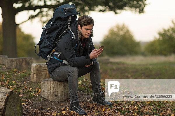 Young man sitting on tree stump  using smartphone