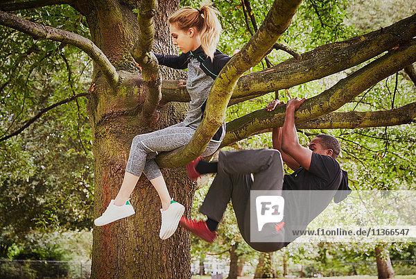 Personal Trainerin und junge Frau beim Aufstieg auf den Parkbaum
