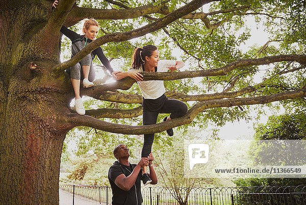 Personal Trainerin,  die der Frau hilft,  den Parkbaum zu erklimmen.