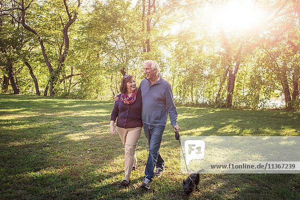 Romantisches Seniorenpaar beim Spaziergang mit dem Hund im sonnenbeschienenen Park
