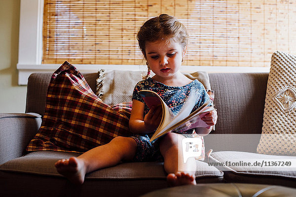 Female toddler sitting on sofa reading storybook