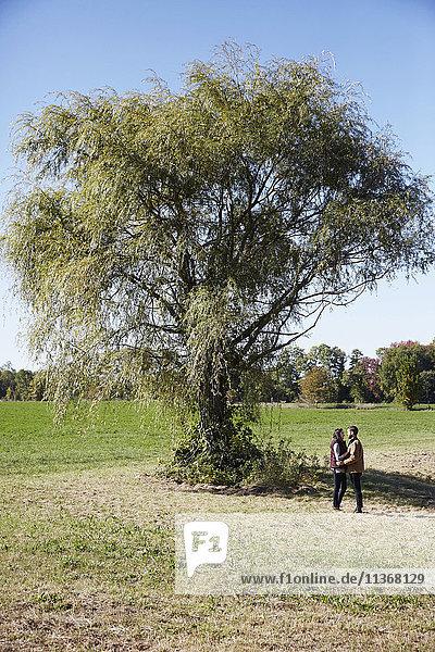 Eine junge Frau und ein junger Mann stehen neben einem Baum auf einem Feld und schauen sich gegenseitig an.