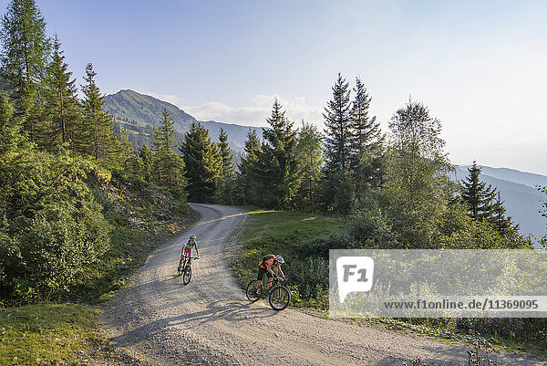 Two mountain biker friends riding on dirt road through forest  Zillertal  Tyrol  Austria