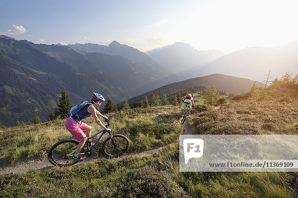 Two mountain bikers riding on hill in alpine landscape  Zillertal  Tyrol  Austria