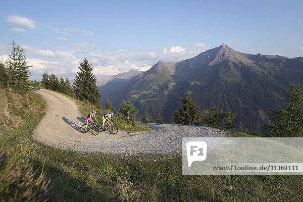 Two mountain bikers riding on dirt track in alpine landscape  Zillertal  Tyrol  Austria