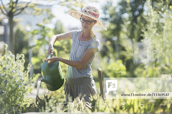 Mature woman watering plants and surrounded by many plants in urban garden