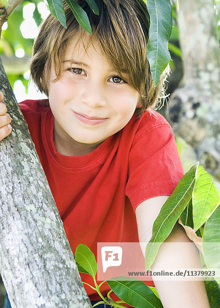 Caucasian boy smiling in tree
