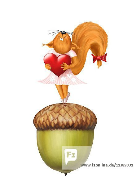 Glückliches rotes Eichhörnchen mit einem Herz in den Händen  auf einer Eichel stehend  Illustration