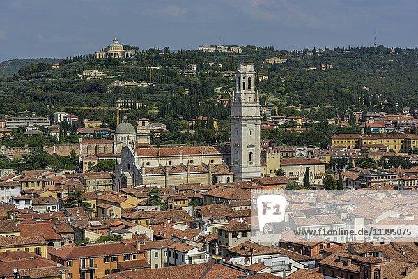 Cathedral Santa Maria Matricolare  Verona province  Veneto  Italy  Europe
