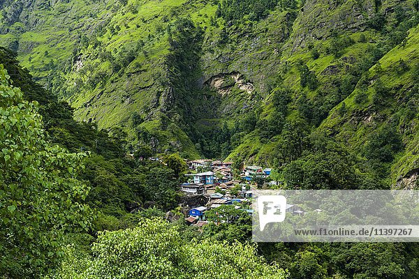 Little Village in der grünen Berglandschaft  Ober Marsyangdi Tal  Jagat  Lamjung  Nepal  Asien
