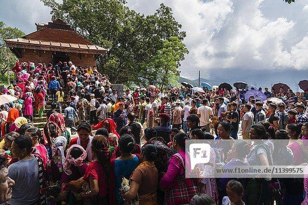Einheimische mit Hähnen  Opfertiere  Khadga Devi Mandir-Tempel  Darsain Hindu Festival  Bandipur  Tanahun  Nepal  Asien