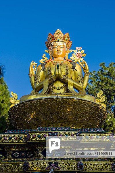 Kathmandu Hauptstadt groß großes großer große großen Asien Buddha Nepal Swayambhunath