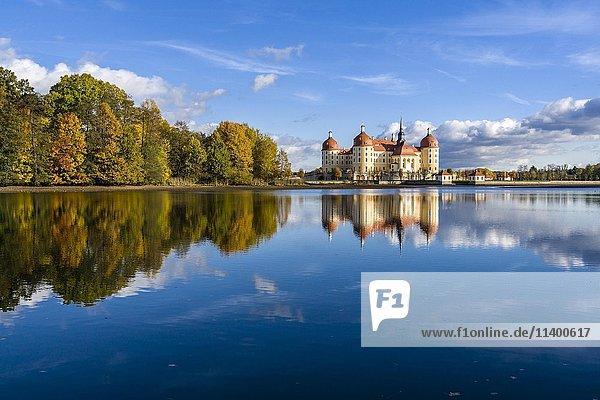 Schloss Moritzburg umgeben von See  Jagdschloss  Moritzburg  Sachsen  Deutschland  Europa