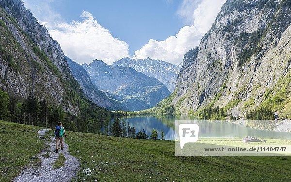 Wanderweg zum Obersee mit Wasserspiegelung  Salet am Königssee  Nationalpark Berchtesgaden  Berchtesgadener Land  Oberbayern  Bayern  Deutschland  Europa