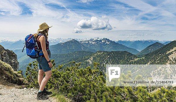 Wanderin blickt auf Alpenvorland  Gratwanderung Herzogstand-Heimgarten  Oberbayern  Bayern  Deutschland  Europa
