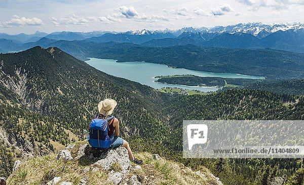 Wanderin blickt auf Kochelsee vom Gipfel des Heimgarten  links Herzogstand  Oberbayern  Bayern  Deutschland  Europa