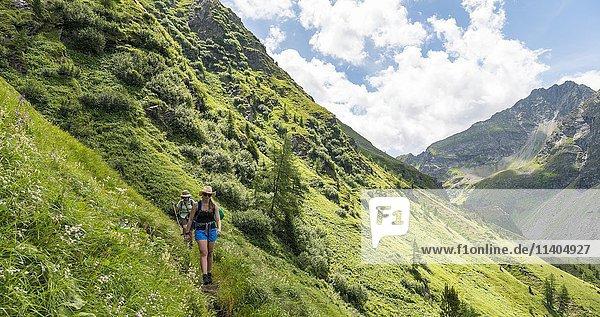 Zwei Wanderer auf einem Wanderweg  Schladminger Tauern  Schladming  Steiermark  Österreich  Europa
