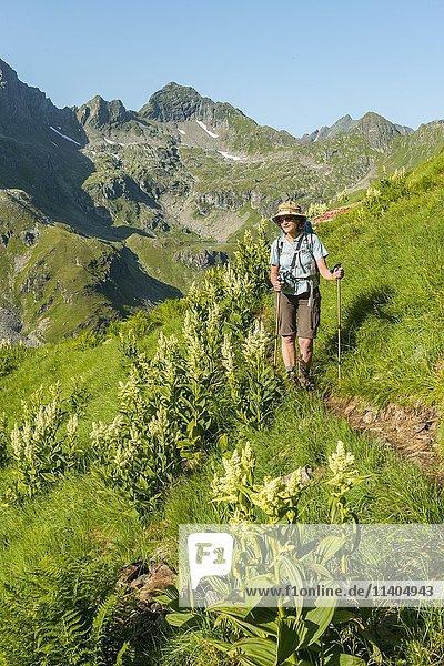 Wanderin auf einem Wanderweg  Schladminger Tauern  Schladming  Steiermark  Österreich  Europa