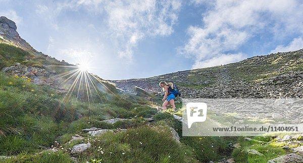 Wanderin auf Wanderweg in Bergen  Sonne strahlt über Bergkamm  Aufstieg auf Greifenberg  Schladminger Tauern  Steiermark  Österreich  Europa