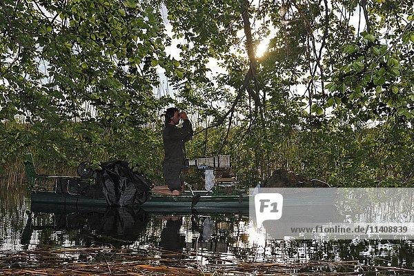 Nature photographer on boat with binoculars  Müritz National Park  Mecklenburg-Western Pomerania  Germany  Europe