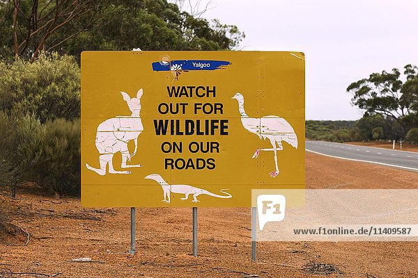 Roadside sign with wildlife  Yalgoo  Western Australia