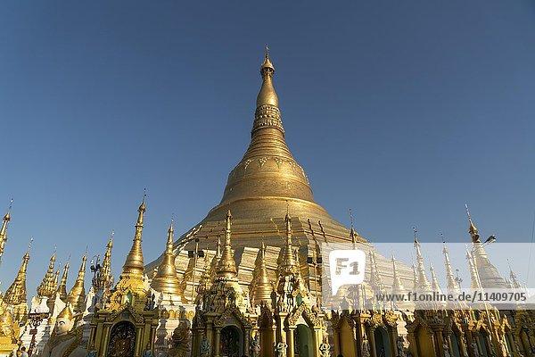 Shwedagon Zedi Daw  Shwedagon Pagoda  Yangon  Myanmar  Asia