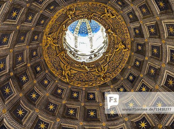 Innenaufnahme der Kuppel im Dom von Siena  Cattedrale di Santa Maria Assunta  Siena  Toskana  Italien  Europa