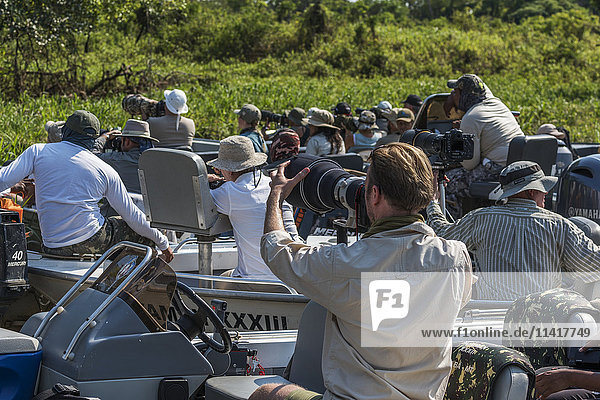 'Photographers in boats pointing cameras towards bank; Mato Grosso do Sul  Brazil'