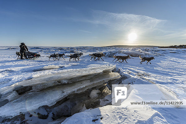 Dallas Seavey makes his way across the sea ice and pressure ridges of Norton Bay as he makes his way on the trail to the Koyuk checkpoint during the 2016 Iditarod  Alaska