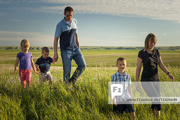 'A family walks through a farm field; Herschel  Saskatchewan  Canada'