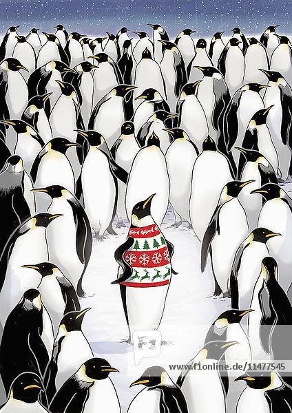 Pinguin mit gemustertem Pullover ragt aus der Menge heraus