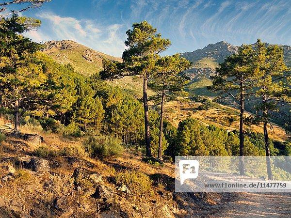 Mijares pass in the Sierra de Gredos. Avila. Castilla Leon. Spain. Europe.