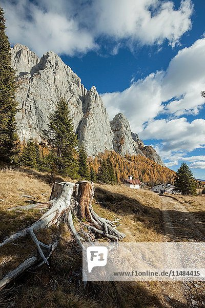 Autumn afternoon near Sorgenti del Piave mountain shelter  Dolomites  Italy.
